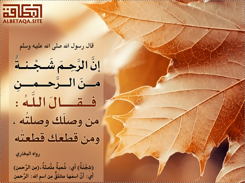 إن الرحم شجنة من الرحمن
