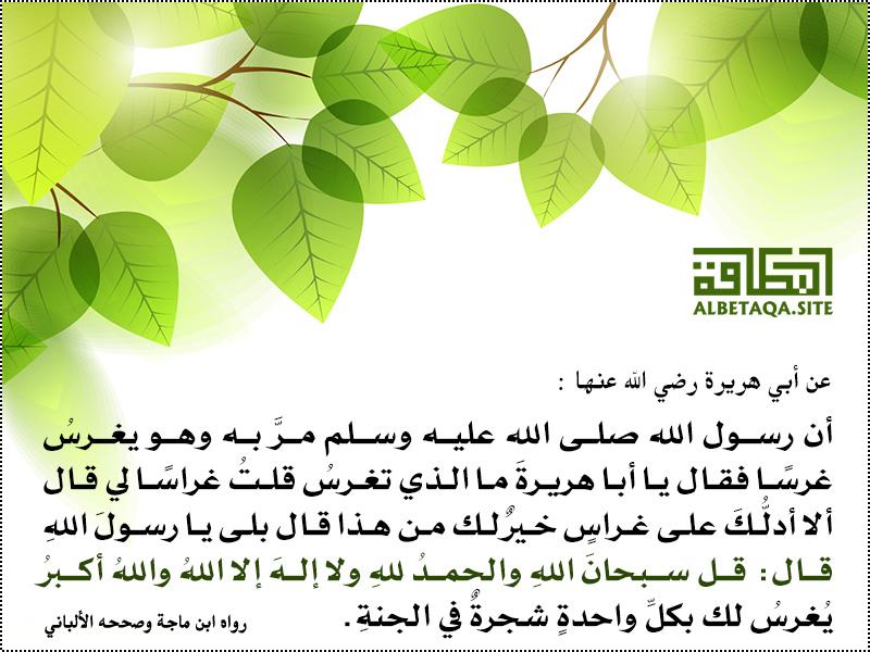سبحان الله والحمد لله ولا إله إلا الله والله أكبر