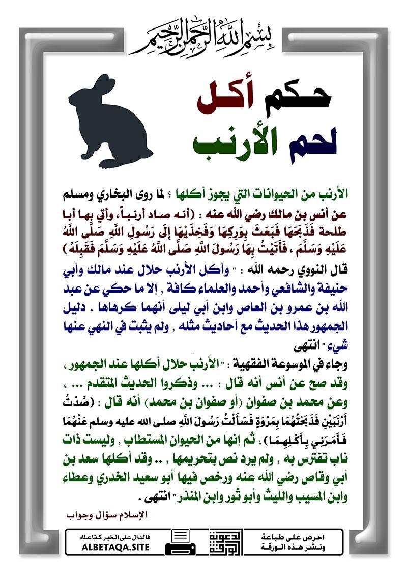 حكم أكل لحم الأرنب