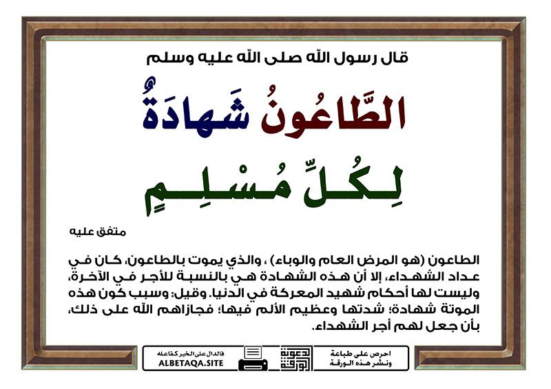 الطاعون شهادة لكل مسلم