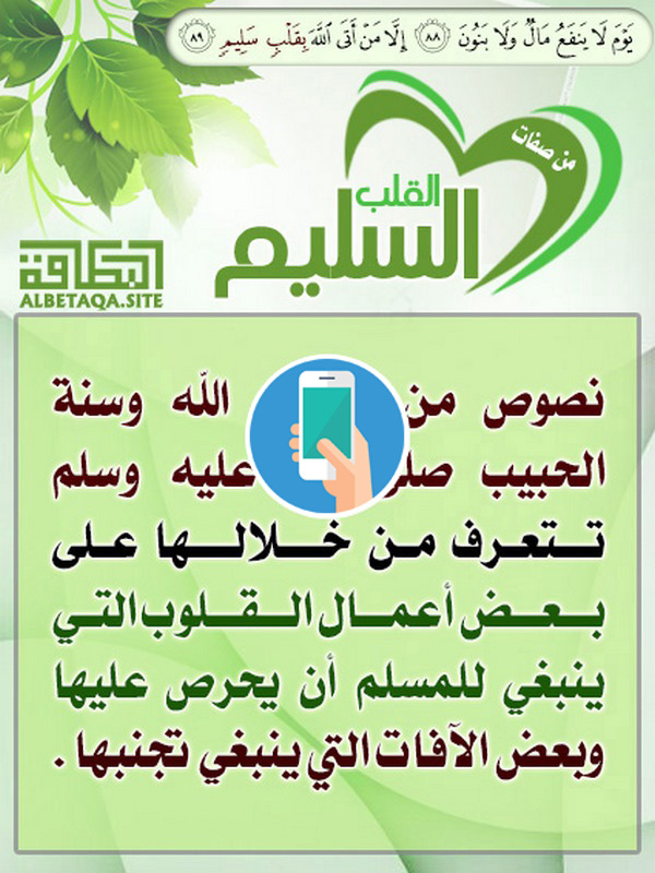 https://www.albetaqa.site/images/apps/qlbslym.jpg